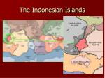 the indonesian islands