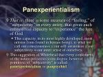 panexperientialism29