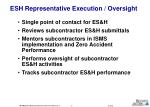 esh representative execution oversight
