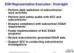 esh representative execution oversight16