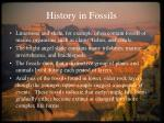 history in fossils