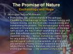 the promise of nature eschatology and hope29
