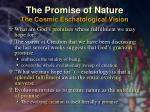 the promise of nature the cosmic eschatological vision