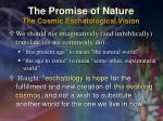 the promise of nature the cosmic eschatological vision31