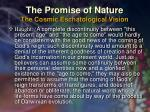 the promise of nature the cosmic eschatological vision32