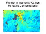 fire risk in indonesia carbon monoxide concentrations