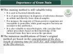 importance of gram stain