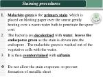 staining procedures