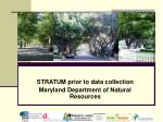 stratum prior to data collection maryland department of natural resources