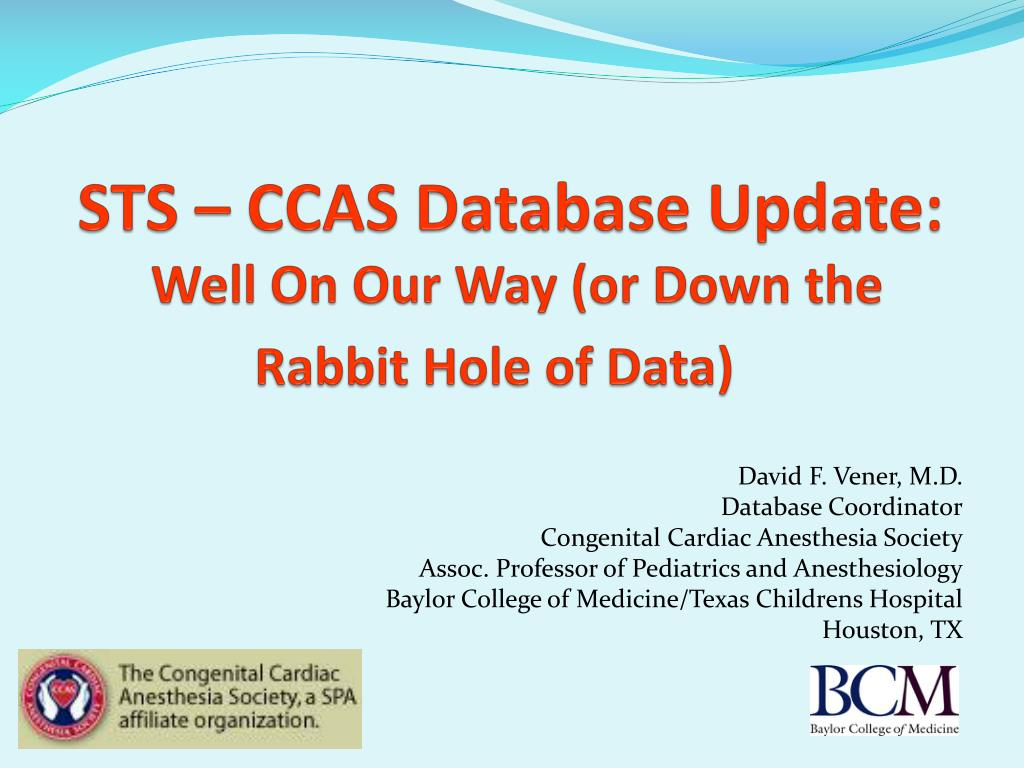 sts ccas database update well on our way or down the rabbit hole of data l.