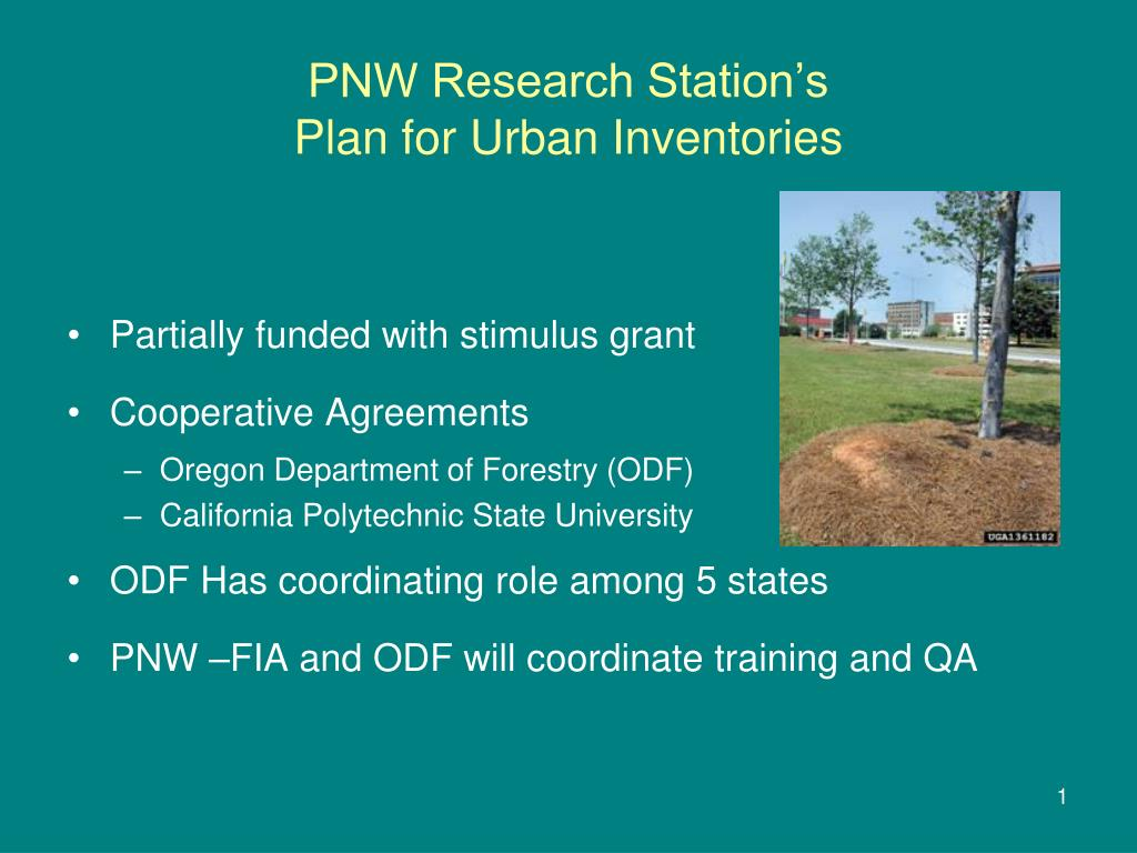 pnw research station s plan for urban inventories l.