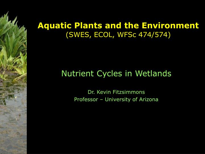 aquatic plants and the environment swes ecol wfsc 474 574 n.