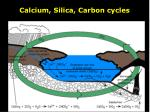 calcium silica carbon cycles