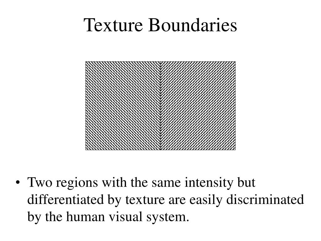Two regions with the same intensity but differentiated by texture are easily discriminated by the human visual system.