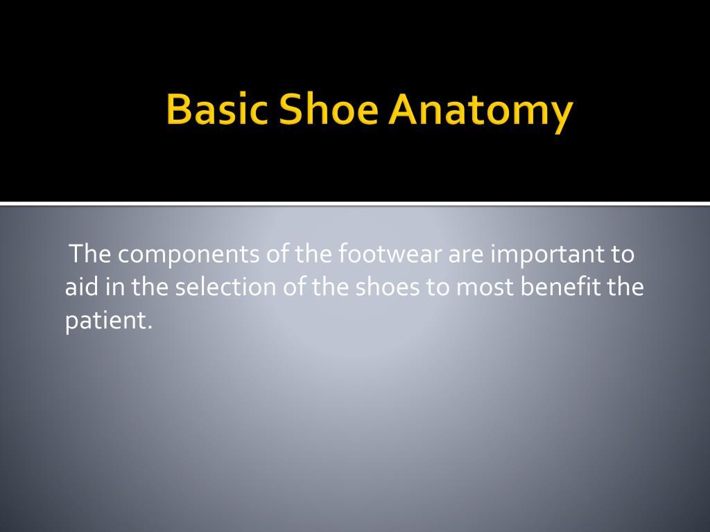 basic shoe anatomy l.