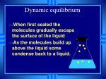dynamic equilibrium34