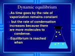 dynamic equilibrium35