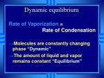 dynamic equilibrium36