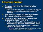 filegroup backup