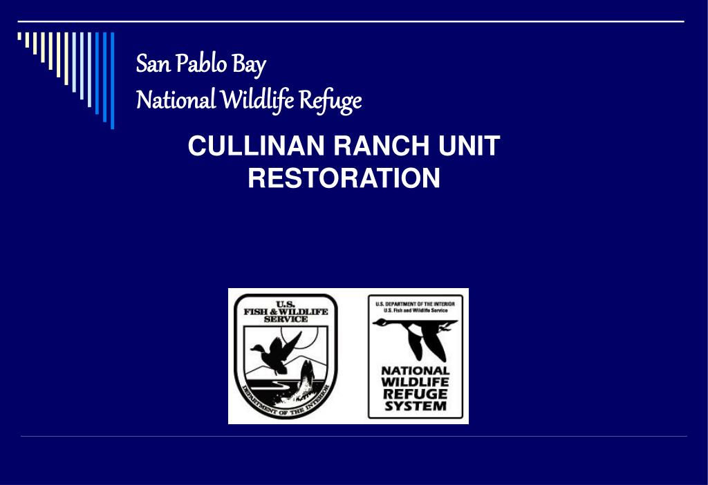san pablo bay national wildlife refuge l.