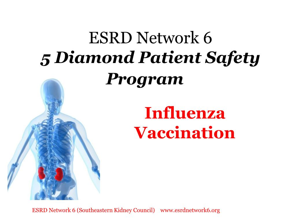 esrd network 6 5 diamond patient safety program l.