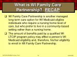 what is wi family care partnership recap52