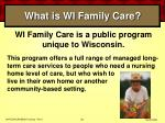 what is wi family care