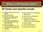 what is wi family care40