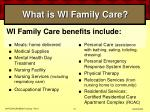 what is wi family care41