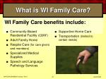 what is wi family care42