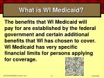what is wi medicaid22