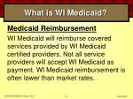 what is wi medicaid24