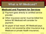 what is wi medicaid25