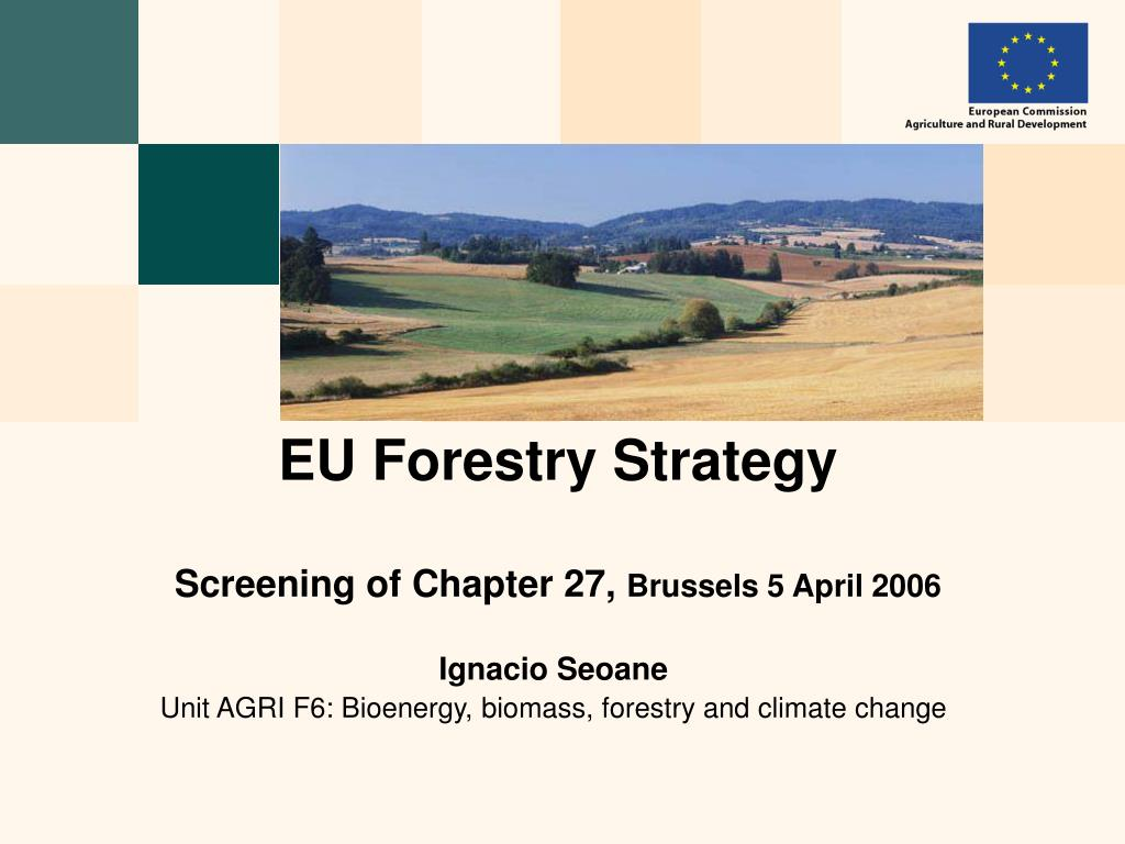 eu forestry strategy screening of chapter 27 brussels 5 april 2006 l.