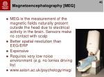 magnetoencephalography meg