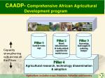 caadp comprehensive african agricultural development program