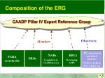 caadp pillar iv expert reference group