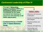 continental leadership of pillar iv