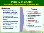 pillar iv of caadp reforming revitalizing and expanding ard