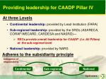 providing leadership for caadp pillar iv