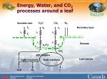 energy water and co 2 processes around a leaf
