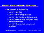 generic maturity model dimensions40