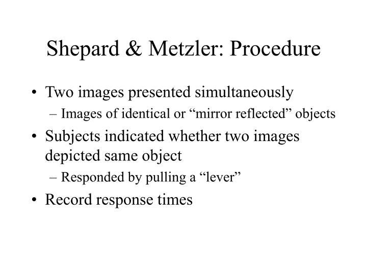 Shepard & Metzler: Procedure