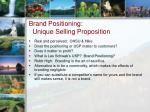 brand positioning unique selling proposition