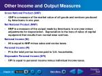 other income and output measures