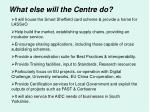 what else will the centre do