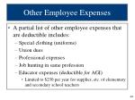 other employee expenses