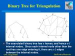 binary tree for triangulation