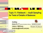 topic 11 fieldwork audit sampling for tests of details of balances