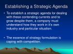 establishing a strategic agenda